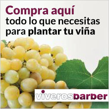 Comprar plantas de vid