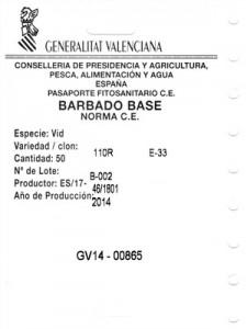 etiqueta_planta_vid_base