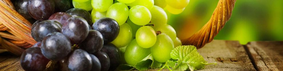 venta de parras de uva