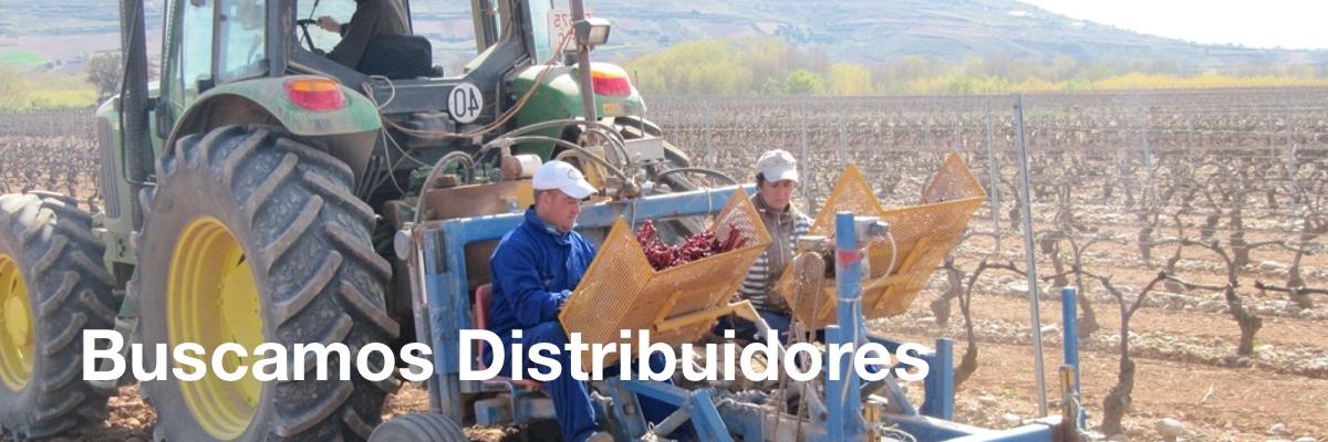 distribuidores de plantas de vid